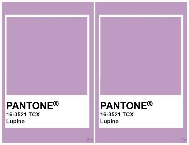 Институт Pantone назвал главные цвета осени 2020. Как и с чем их носить? (ФОТО) - фото №4