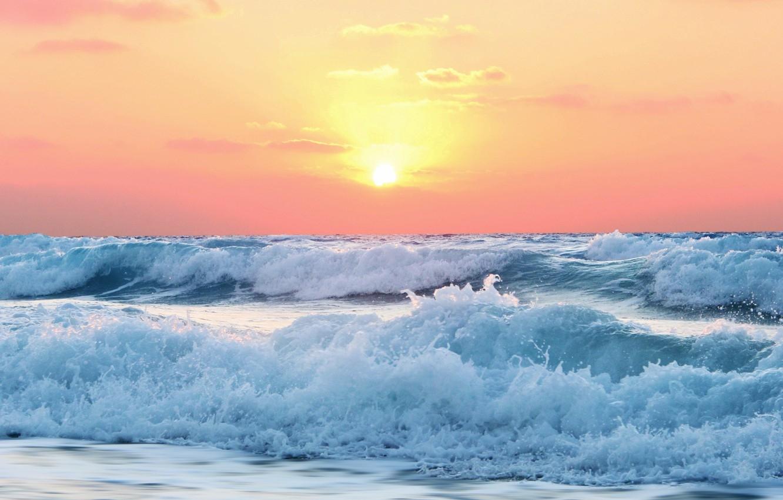 Всемирный день океанов: подборка самых ярких фото - фото №25