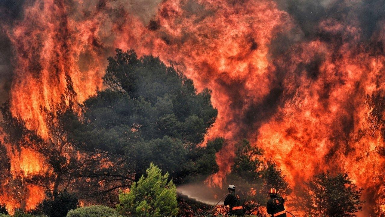 Украинские спасатели отправились тушить лесные пожары в Греции - фото №3