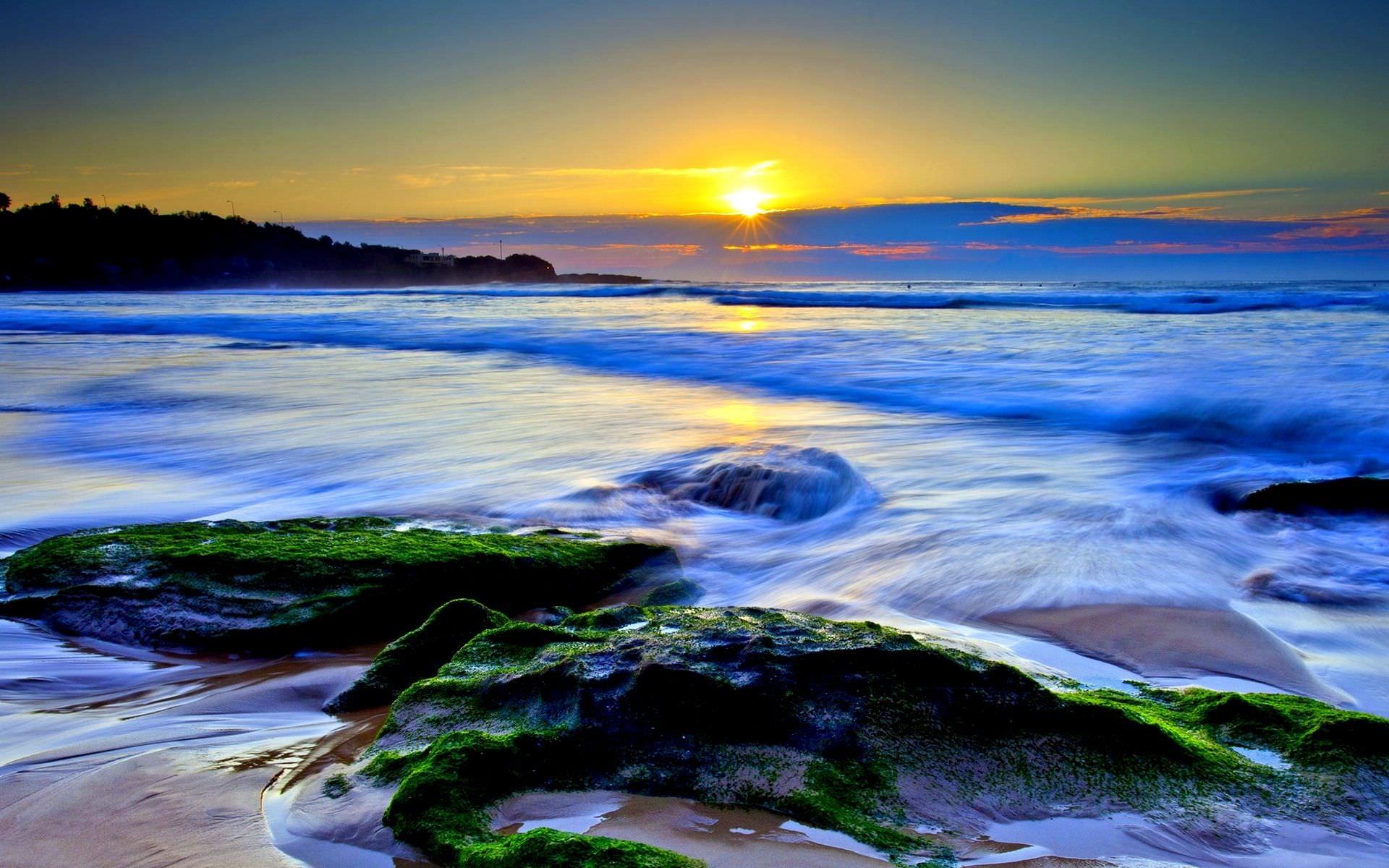 Всемирный день океанов: подборка самых ярких фото - фото №16
