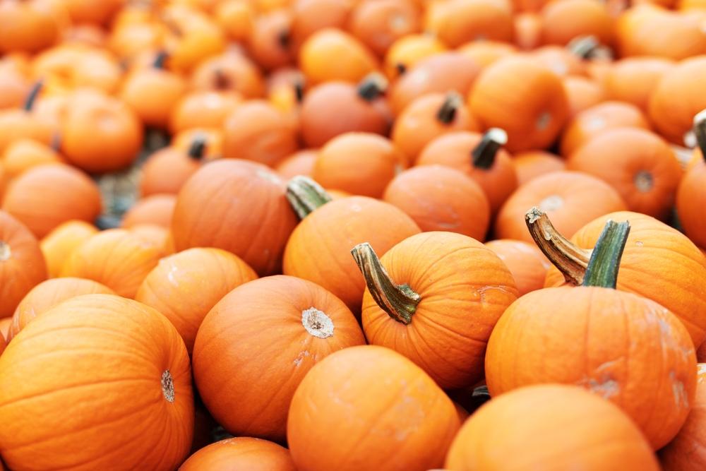 праздник сегодня 4 октября