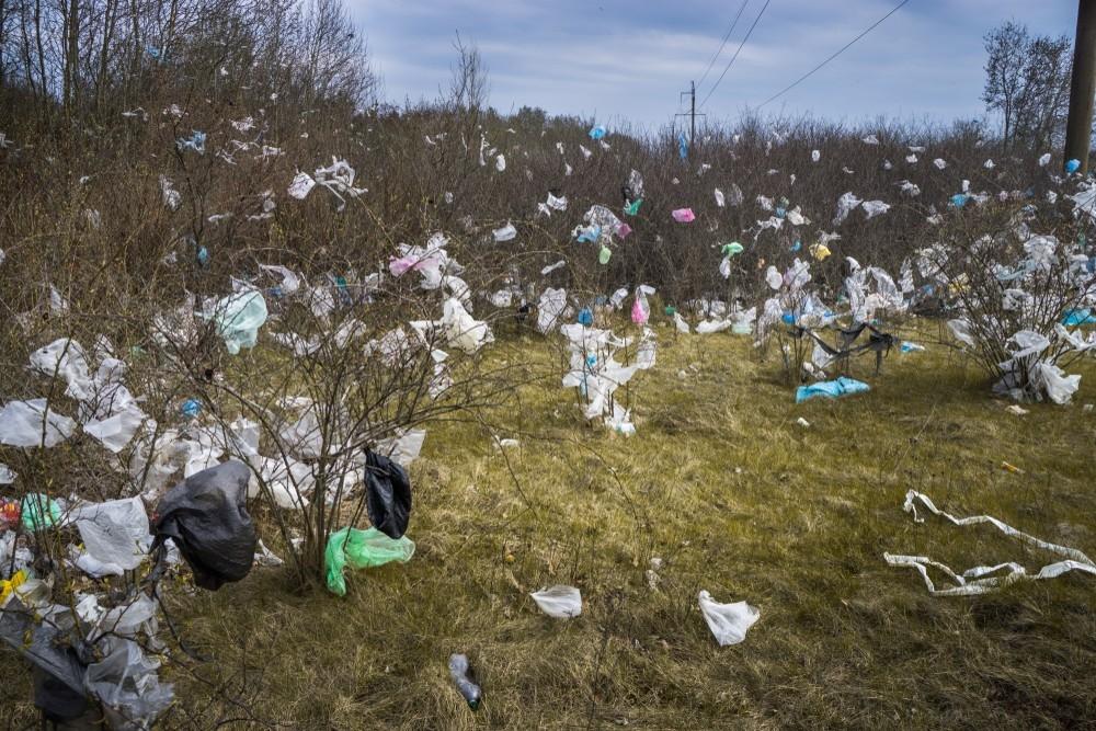 Власти Украины запретили использование пластиковых пакетов - фото №2