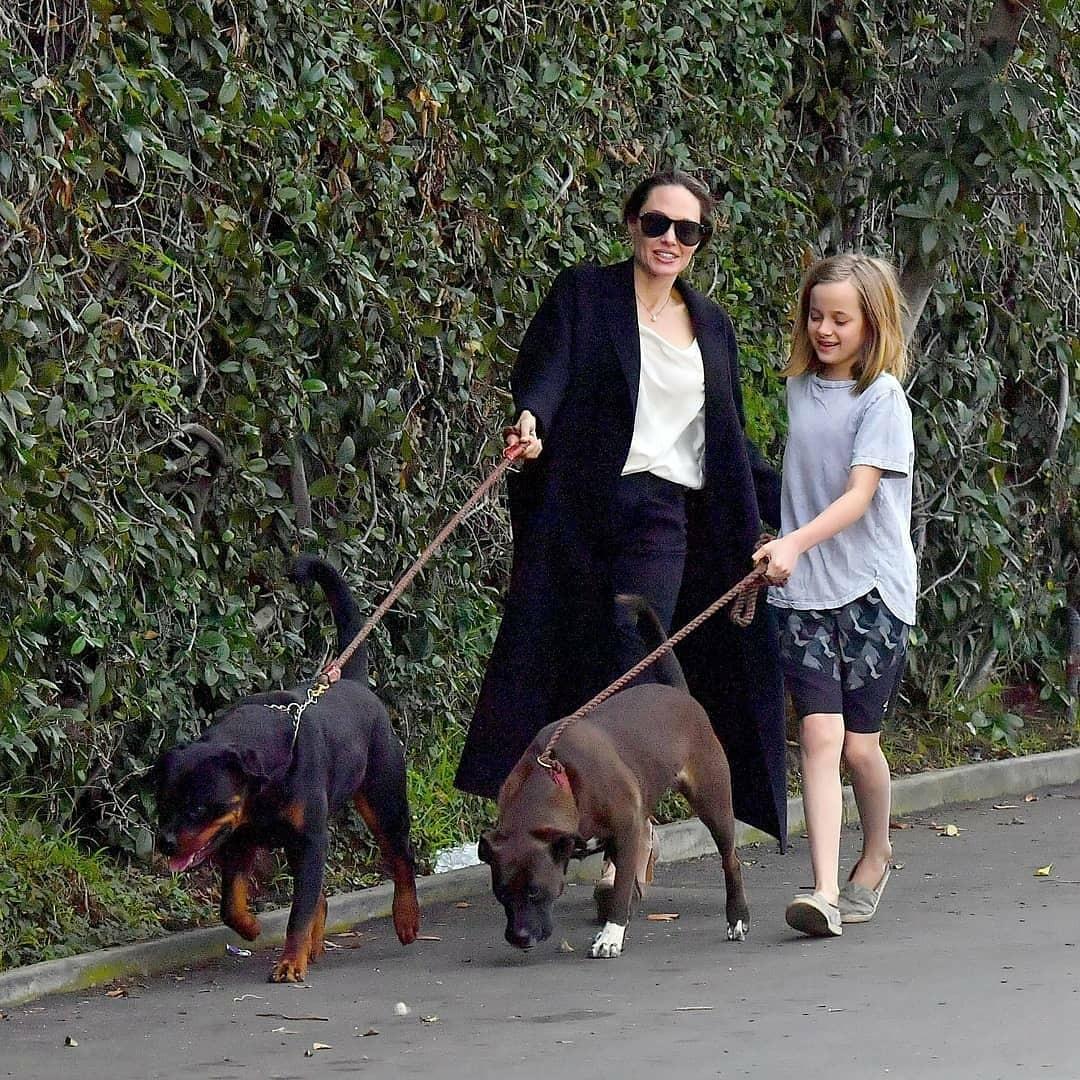 """""""Кто кого выгуливает?"""": новые фото Анджелины Джоли вызвали осуждения поклонников - фото №3"""