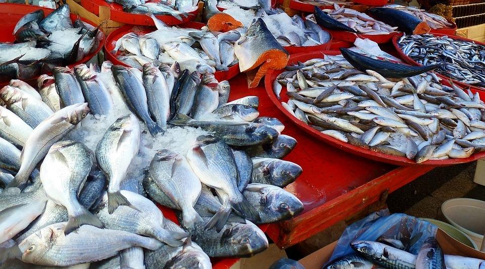 рыбная запеканка