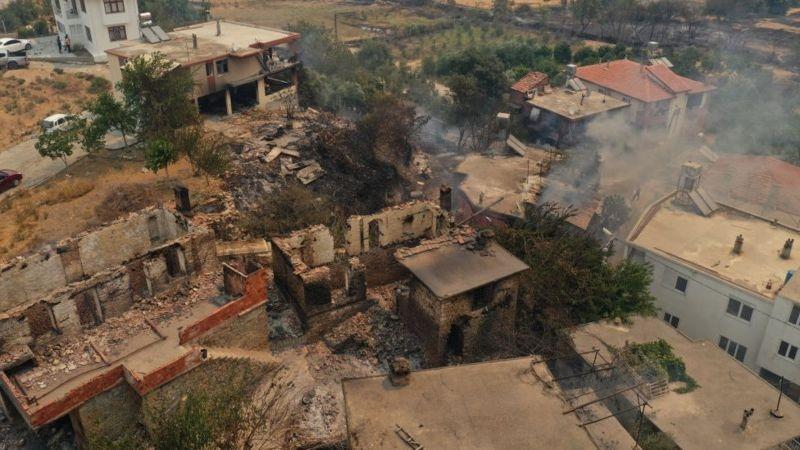 В Турции бушуют лесные пожары: погибло три человека (ФОТО) - фото №5
