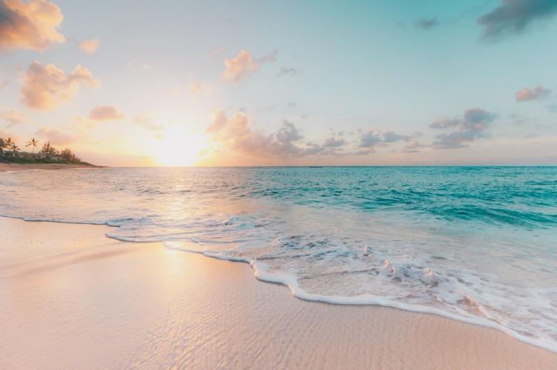 Всемирный день океанов: подборка самых ярких фото - фото №20