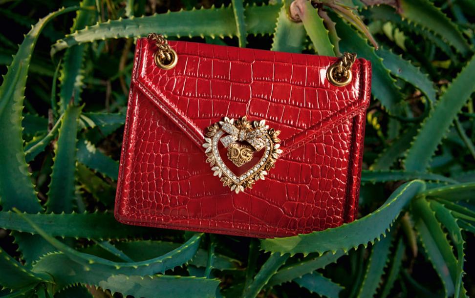 Ослепительная красота: София Вергара — новое лицо Dolce&Gabbana (ФОТО) - фото №8