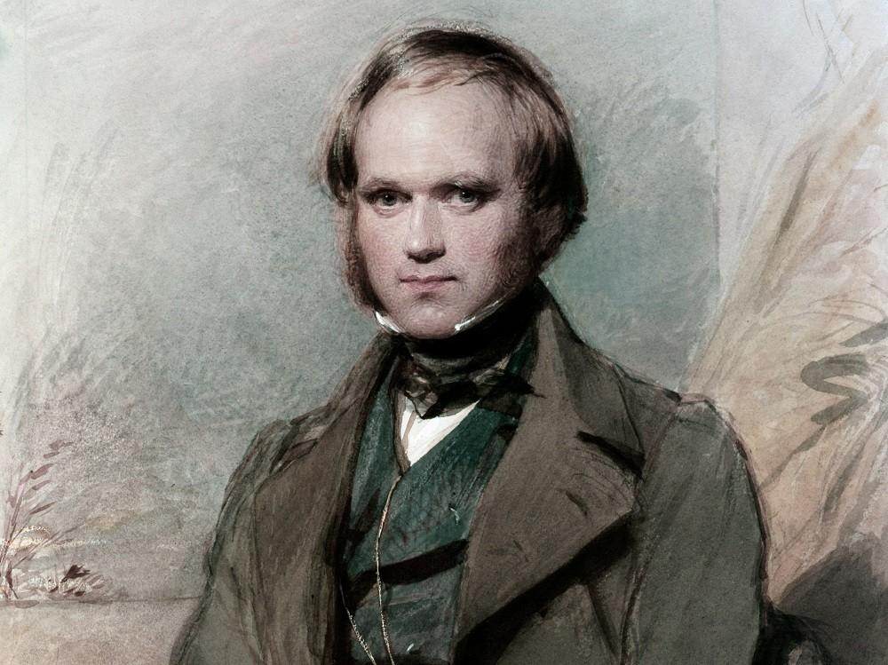 Дарвин