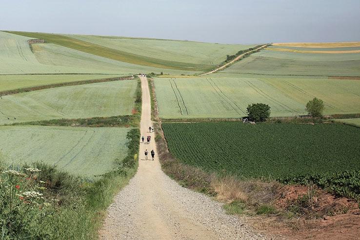 Google Arts & Culture презентує віртуальне паломництво Шляхом Святого Якова - фото №2