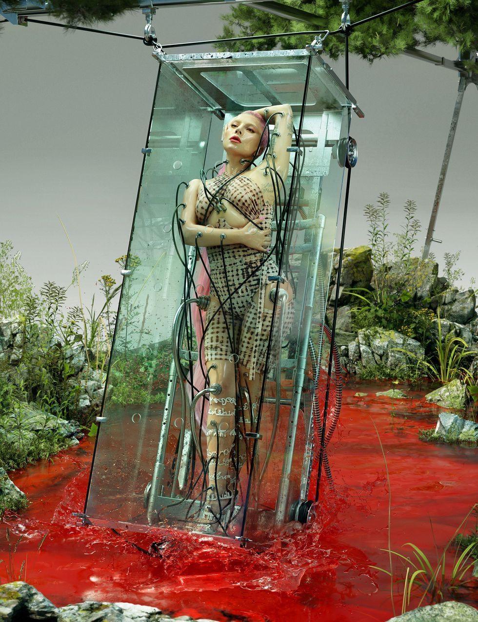 Обнаженная Леди Гага в эпатажной фотосессии для Paper (ФОТО) - фото №4