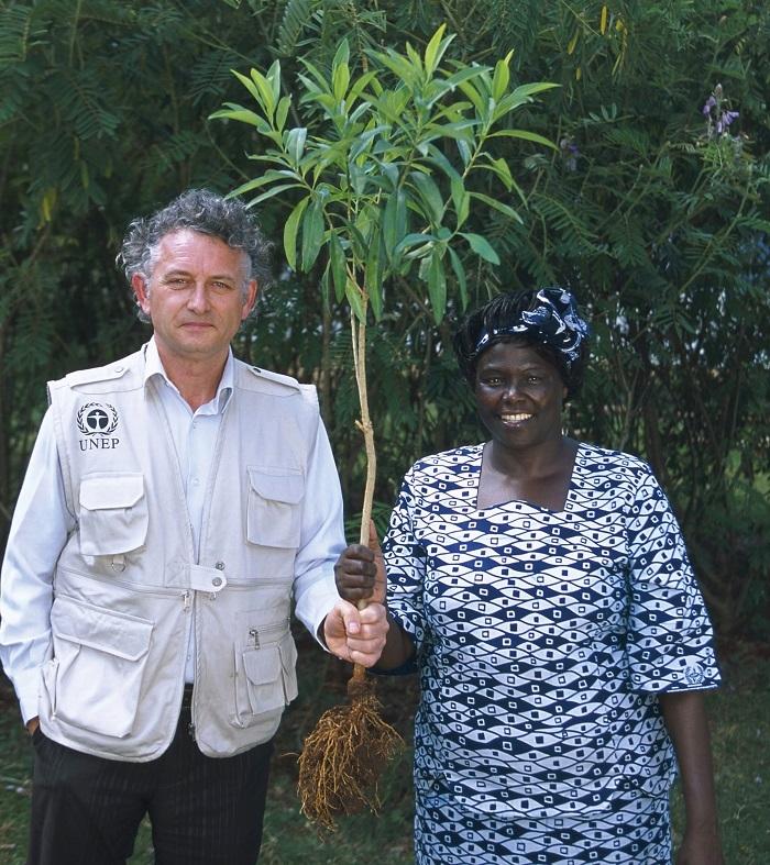 Фонд Yves Rocher висадив 100 мільйонів дерев у світі - фото №1