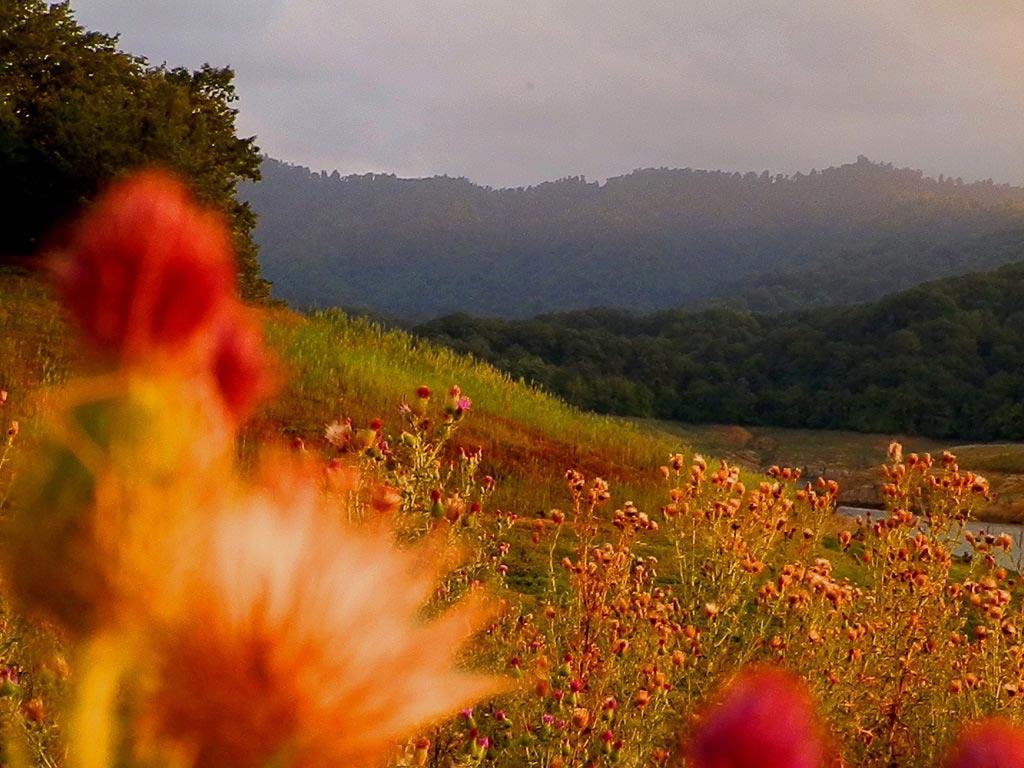 Грязевые вулканы, Симский водопад и уникальные заповедники: что посмотреть в Азербайджане осенью - фото №1