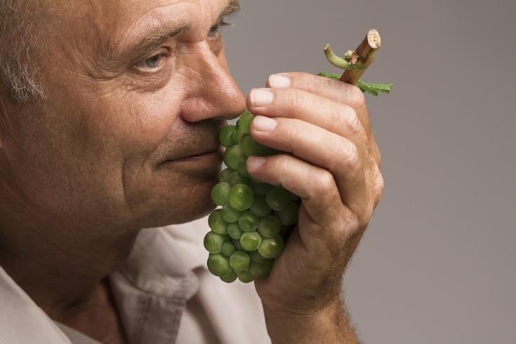 Винная дипломатия: в Украине впервые пройдет Wines of Portugal Grand Tasting 2021 - фото №3