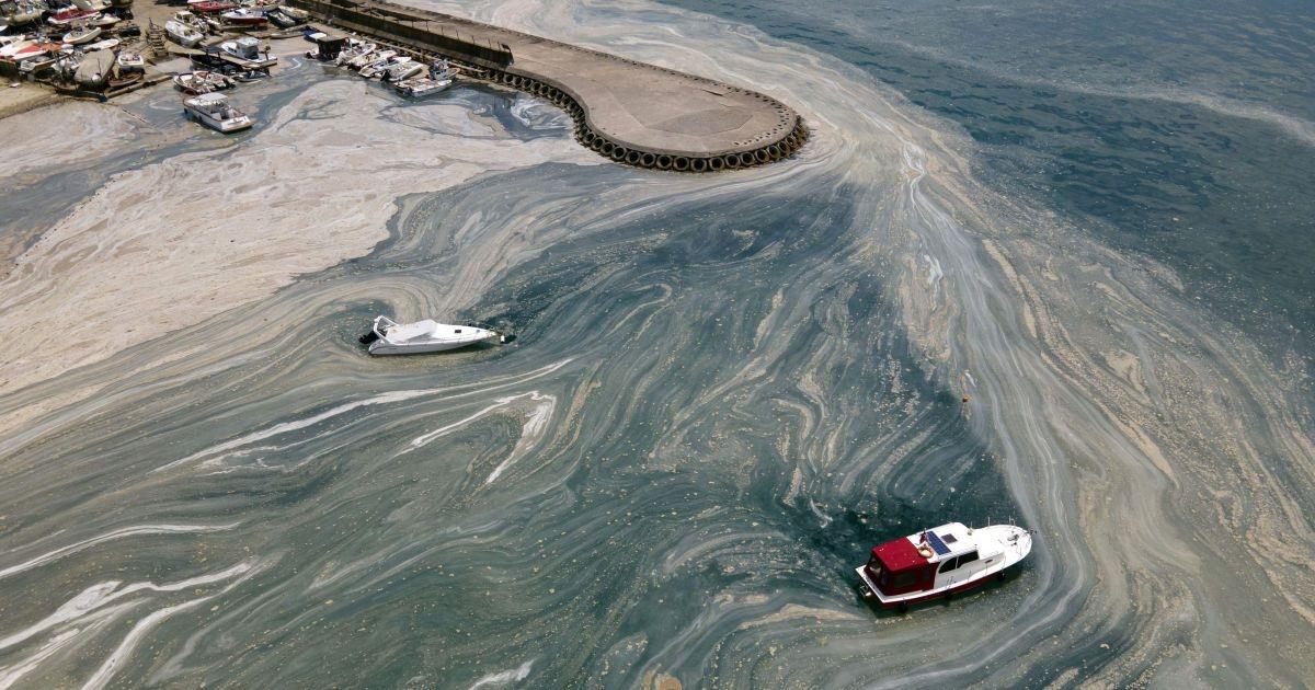 Экологическая катастрофа? В Турции Мраморное море покрылось серой слизью - фото №1