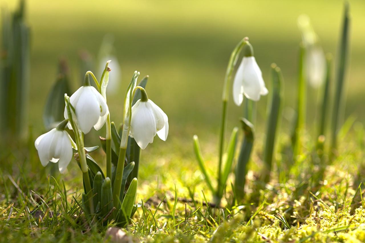 церковный праздник сегодня 19 марта