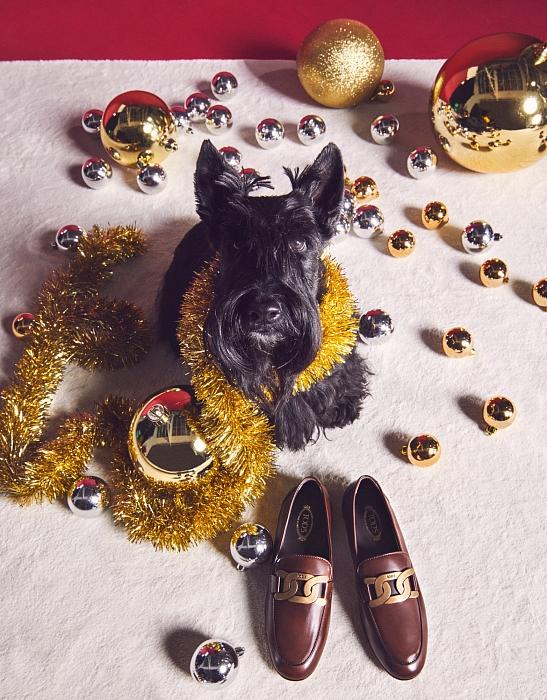 Слишком мило: главными героями рождественской рекламы Tod's стали собаки (ФОТО) - фото №5