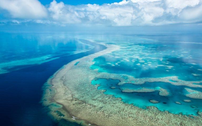 Всемирный день океанов: подборка самых ярких фото - фото №21