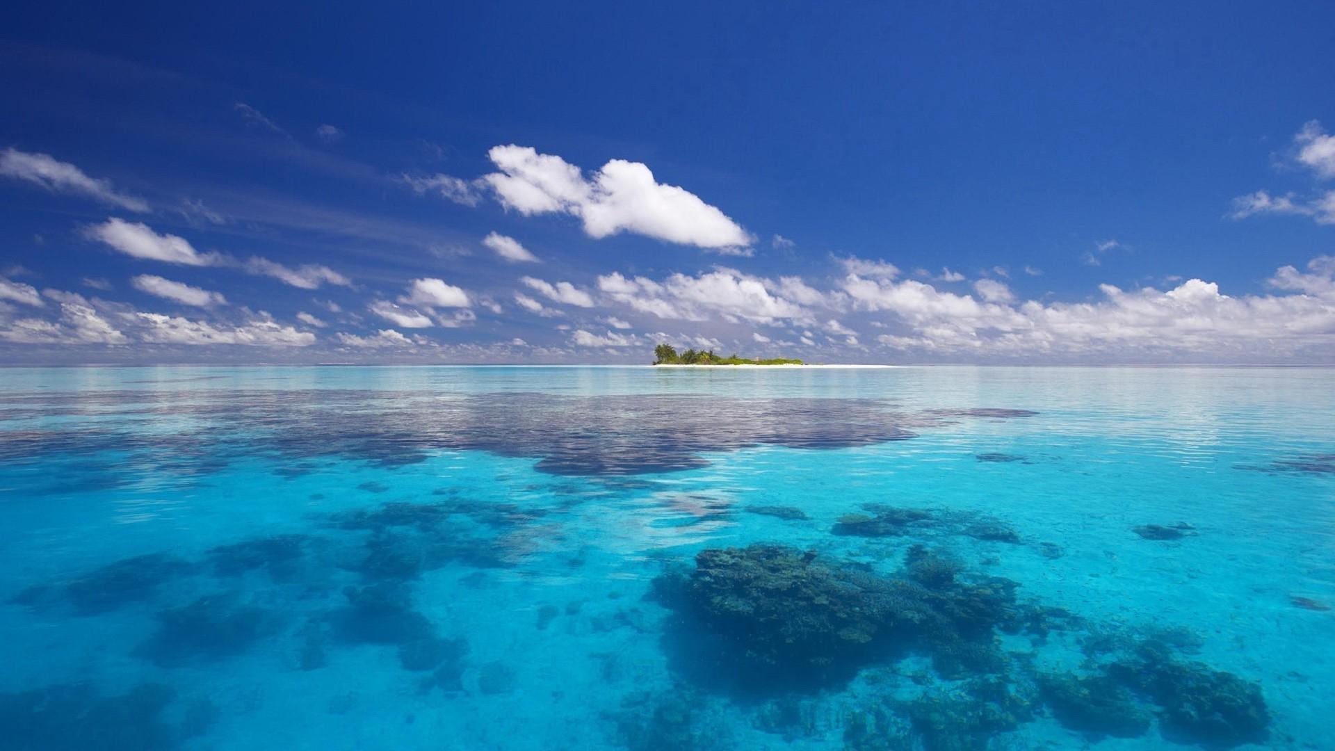 Всемирный день океанов: подборка самых ярких фото - фото №24