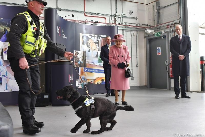 Королева Елизавета II впервые за 7 месяцев появилась на публике (ФОТО) - фото №4