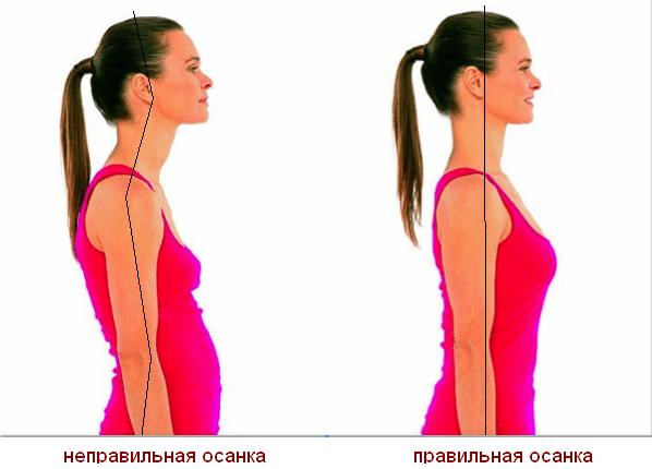Как убрать жировые отложения внизу живота быстро и эффективно: упражнения - фото №2