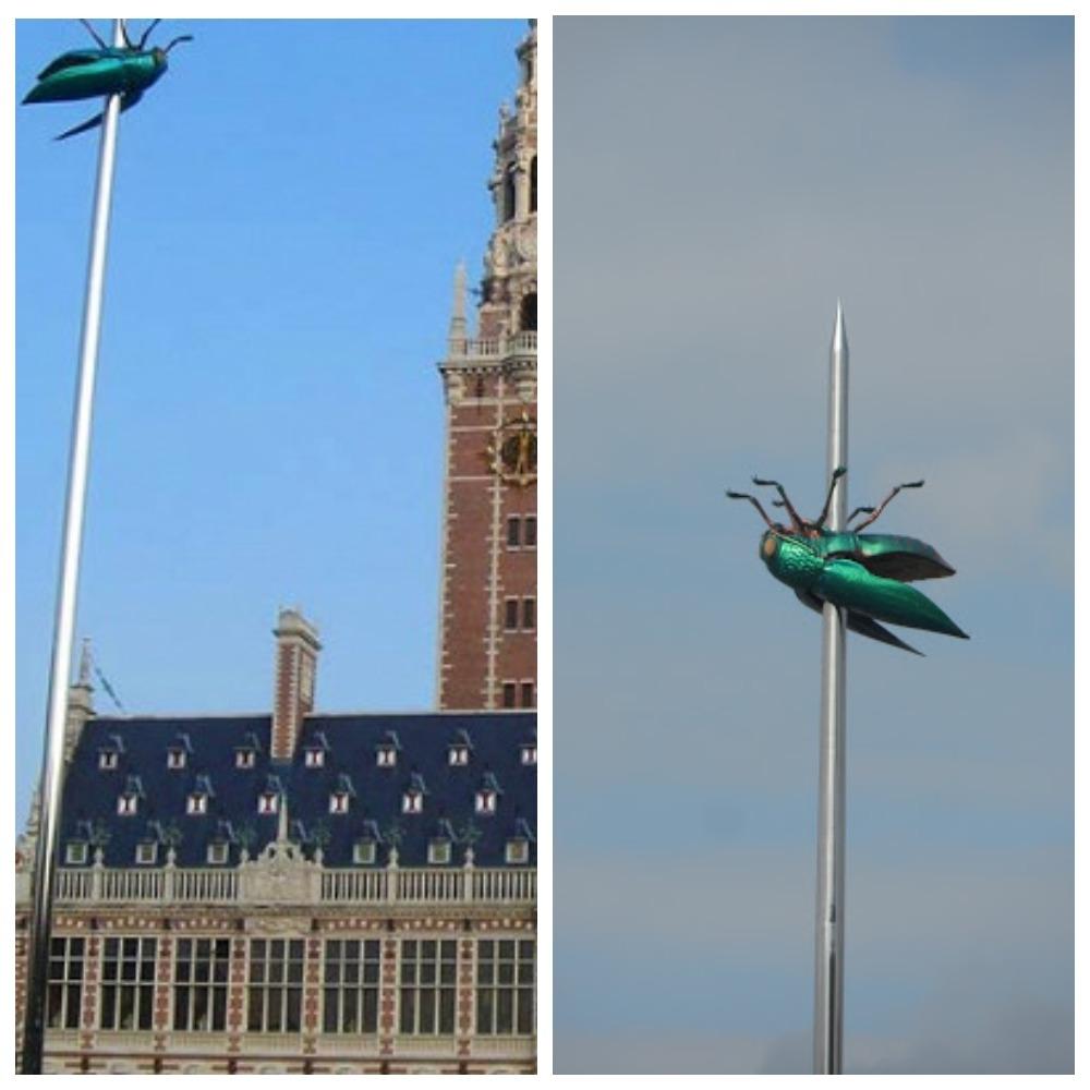 Гигантская муха на булавке. Бельгия.