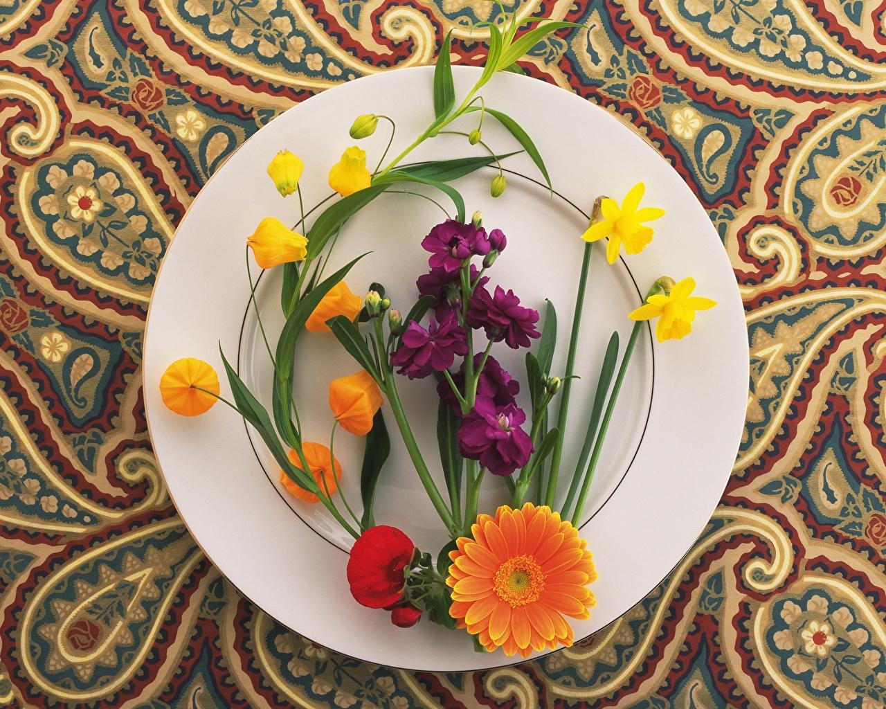праздник сегодня 25 апреля