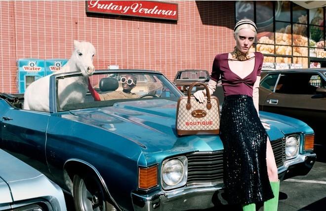 Главные герои новой компании Gucci ... лошади (ФОТО) - фото №3