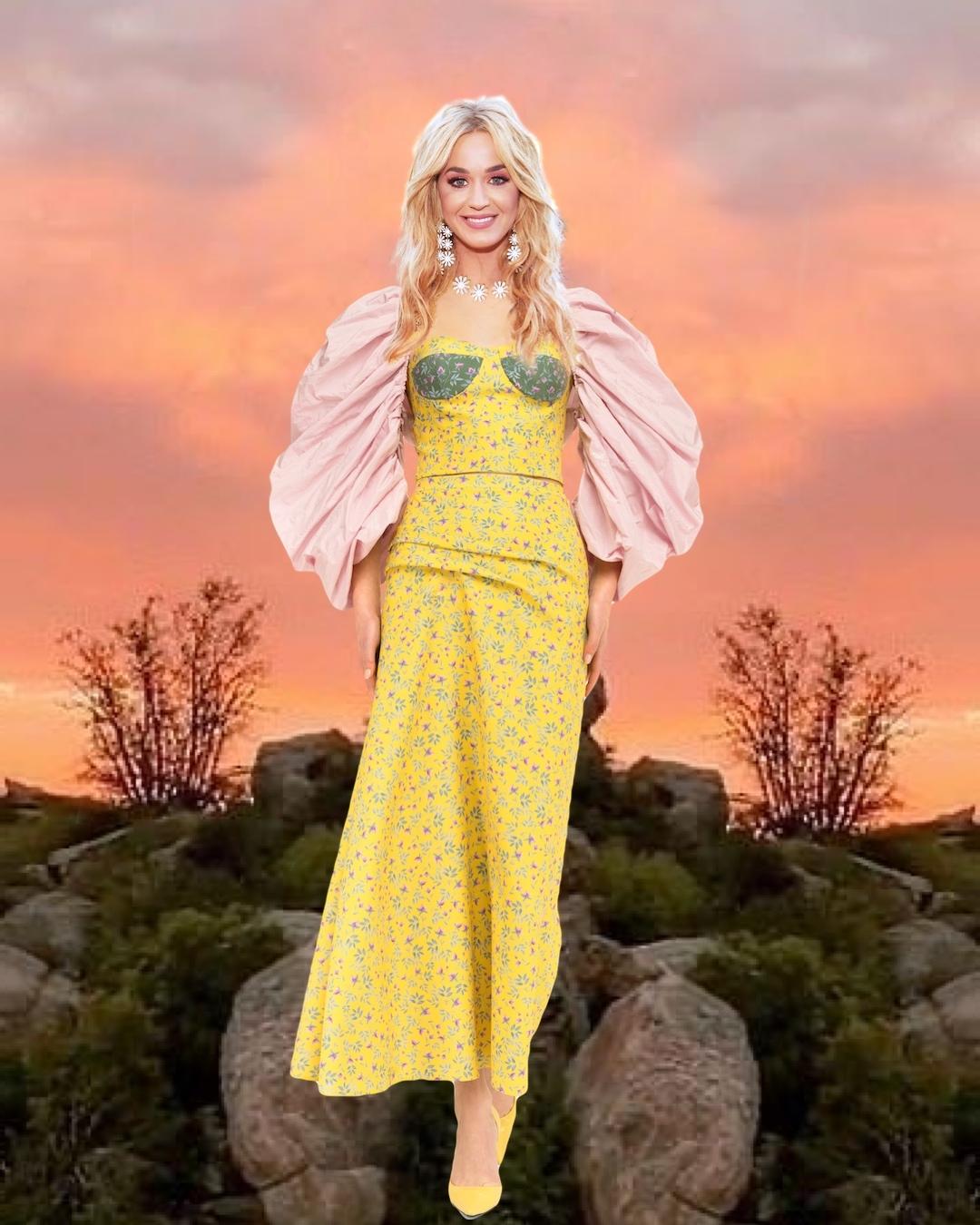 Звездный флешмоб: дизайнер Дарья Донец в шутку примерила свои наряды на мировых знаменитостях (ФОТО) - фото №2
