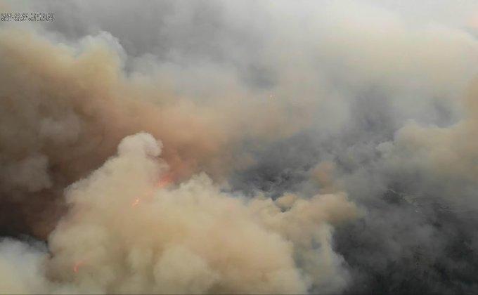 Спасатели продолжают бороться с масштабным пожаром в Чернобыле (ФОТО) - фото №4