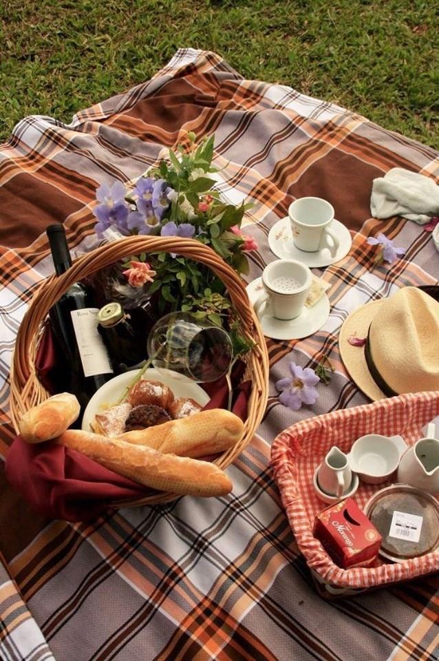 международный день пикника