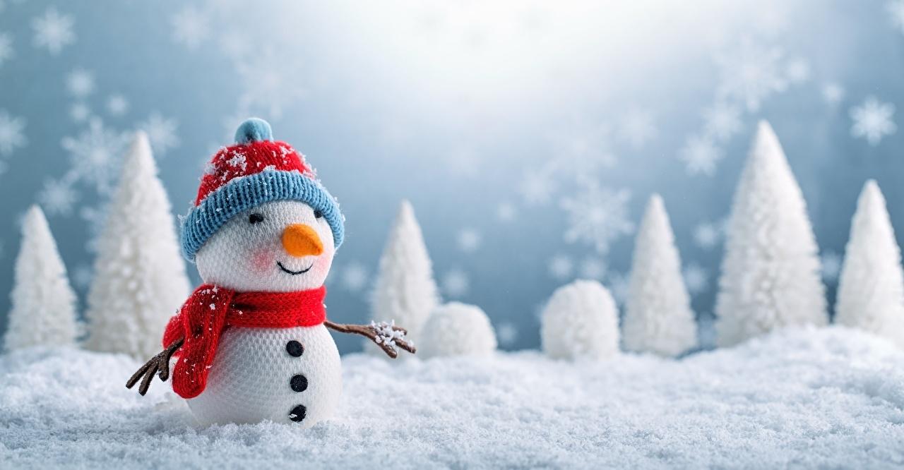 какой сегодня праздник 29 декабря