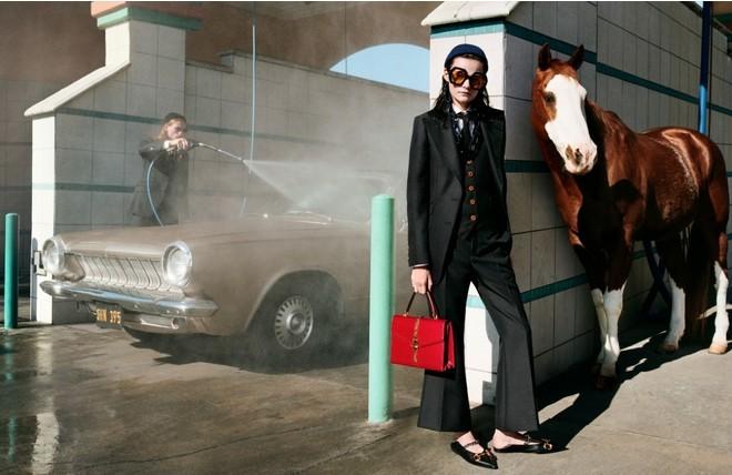 Главные герои новой компании Gucci ... лошади (ФОТО) - фото №4