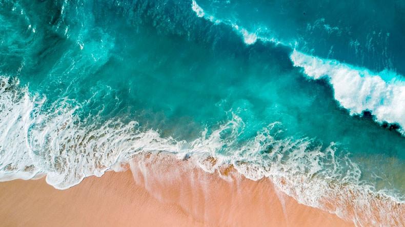 Всемирный день океанов: подборка самых ярких фото - фото №22