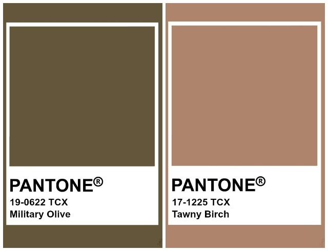 Институт Pantone назвал главные цвета осени 2020. Как и с чем их носить? (ФОТО) - фото №7