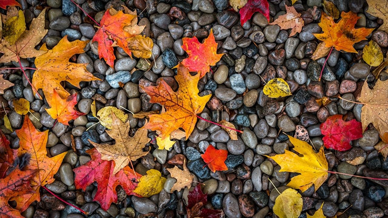 церковный праздник сегодня 18 октября