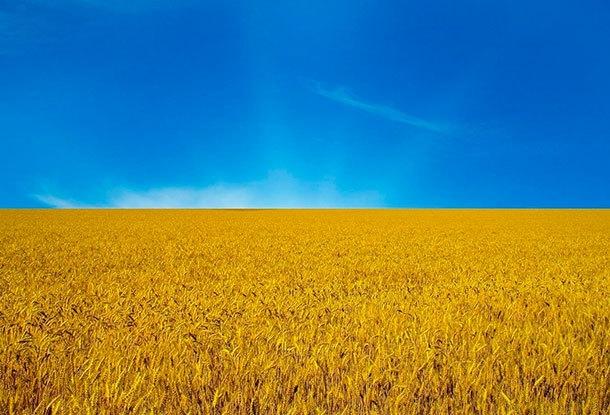 концерт на день независимости украины