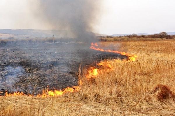 опасность пожаров в украине