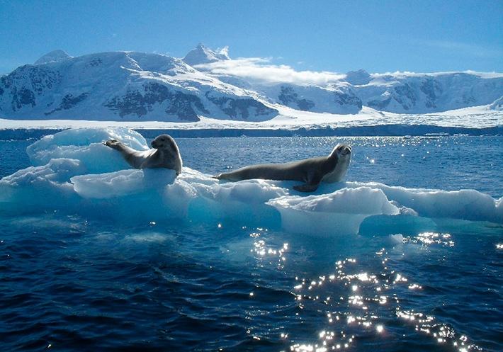 National Geographic признал существование пятого океана и уже отметил его на картах - фото №2