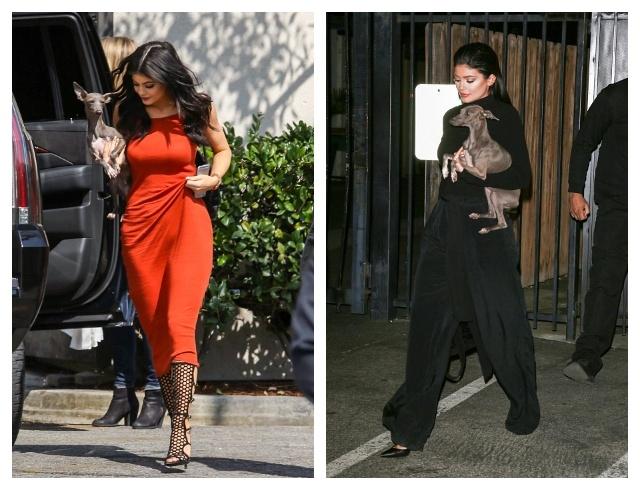 В чем знаменитости ходят на прогулку: уроки стиля на карантине (ФОТО) - фото №1