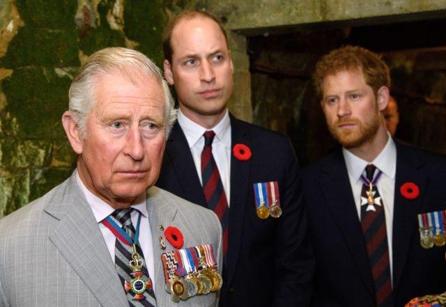 """""""Они в шоке"""": инсайдер рассказал, как королевская семья отреагировала на выход мемуаров принца Гарри - фото №1"""