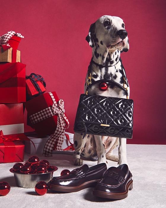 Слишком мило: главными героями рождественской рекламы Tod's стали собаки (ФОТО) - фото №2