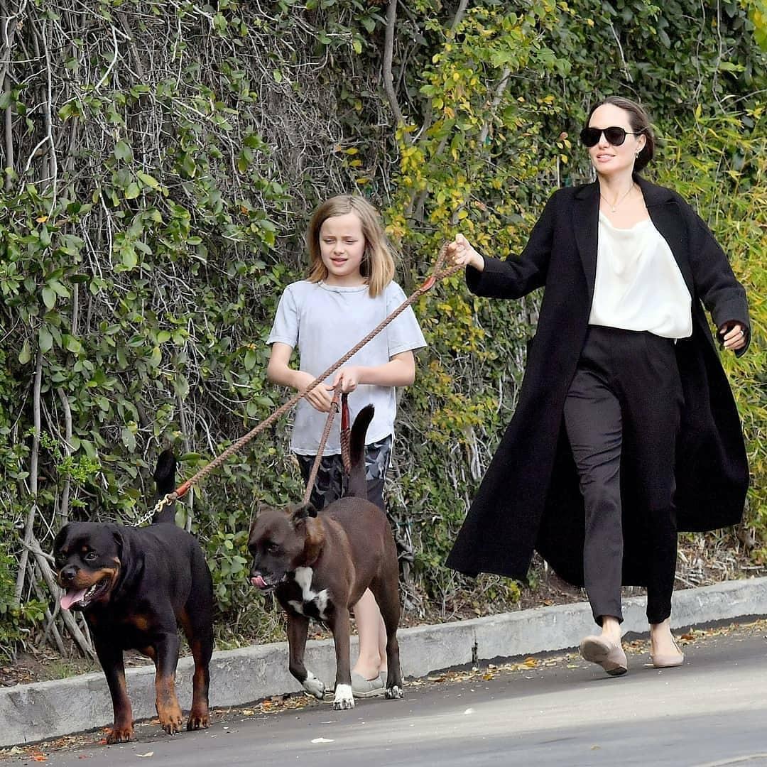 """""""Кто кого выгуливает?"""": новые фото Анджелины Джоли вызвали осуждения поклонников - фото №1"""