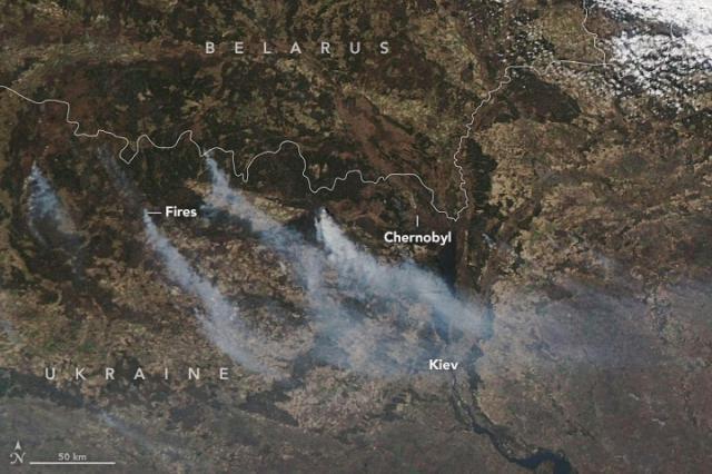 В Чернобыле седьмые сутки горит лес (ВИДЕО) - фото №1
