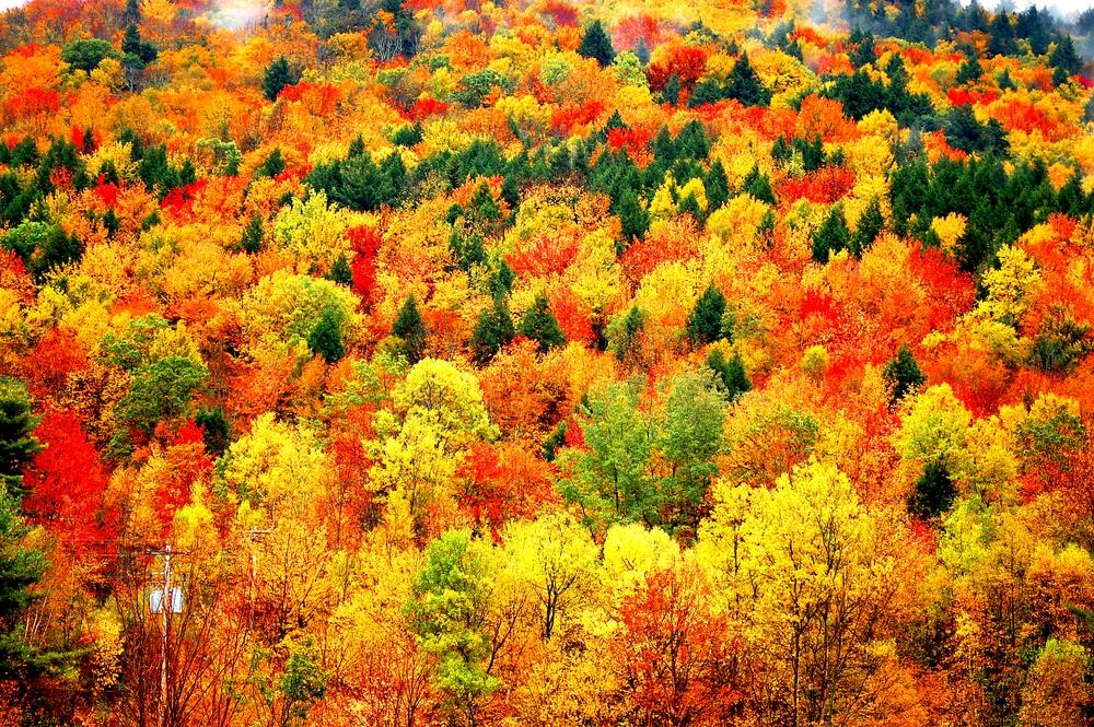 календарь церковных праздников в октябре
