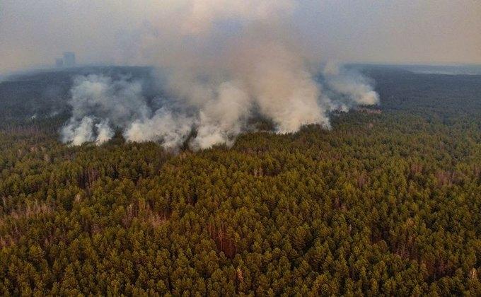 Спасатели продолжают бороться с масштабным пожаром в Чернобыле (ФОТО) - фото №5