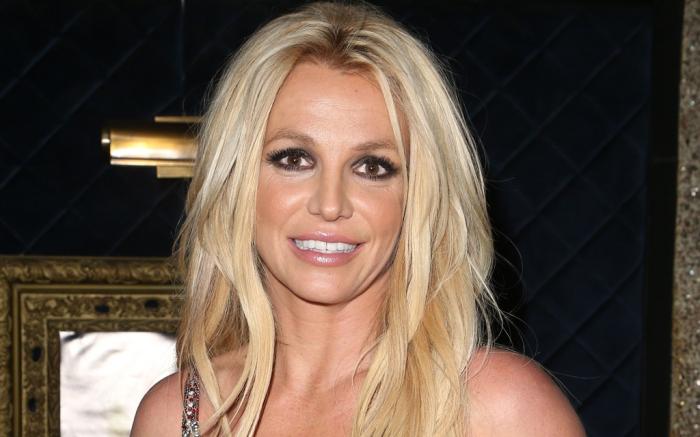 Семейные интриги: мама Бритни Спирс подала в суд, чтобы завладеть миллионами своей дочери - фото №2