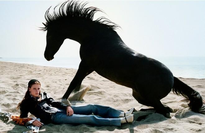 Главные герои новой компании Gucci ... лошади (ФОТО) - фото №5