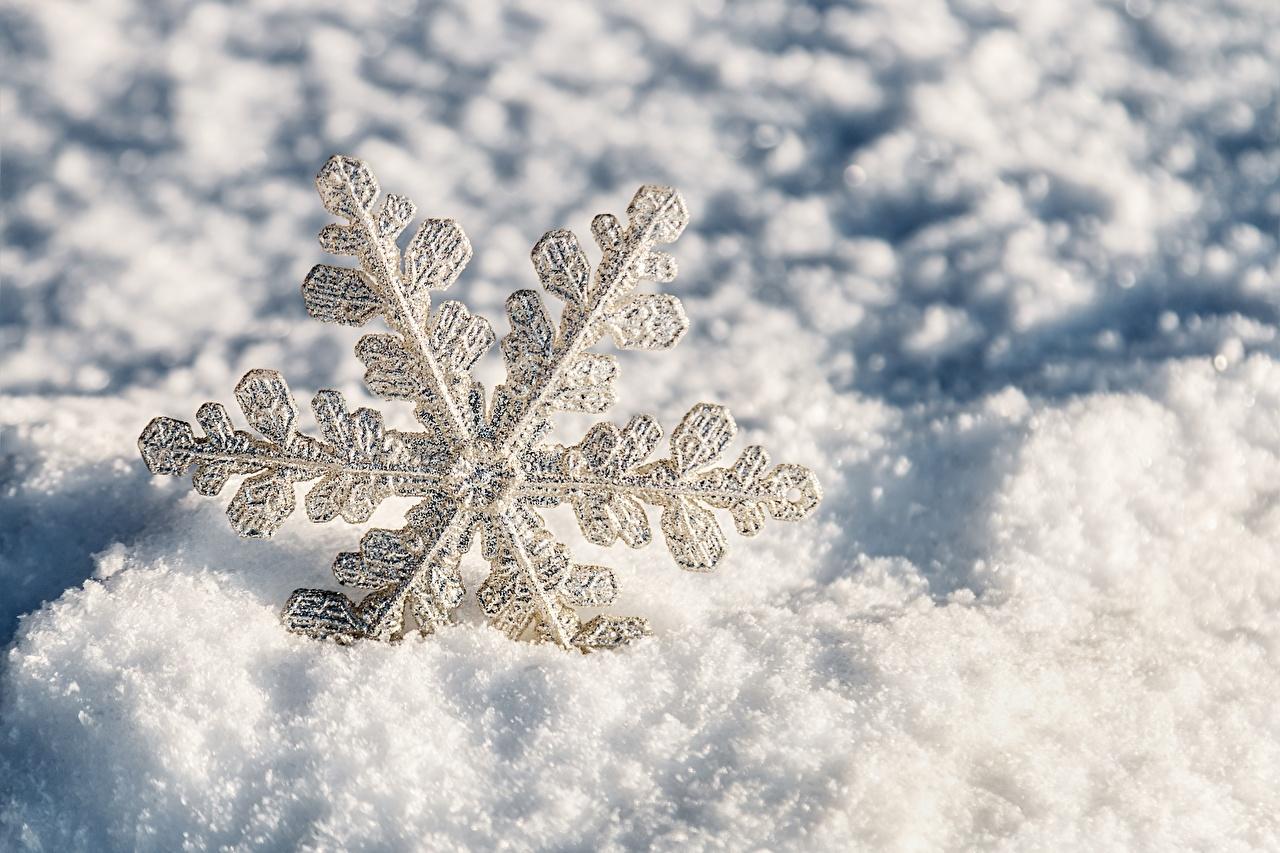 открытки с первым днем зимы