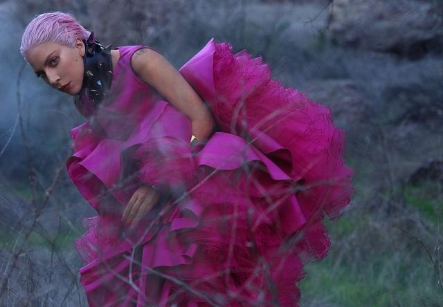 Роскошная Леди Гага снялась в нежной фотосессии для InStyle и призналась, что мечтает о семье (ФОТО) - фото №4