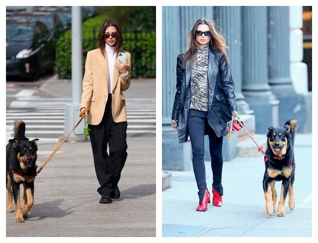 В чем знаменитости ходят на прогулку: уроки стиля на карантине (ФОТО) - фото №3